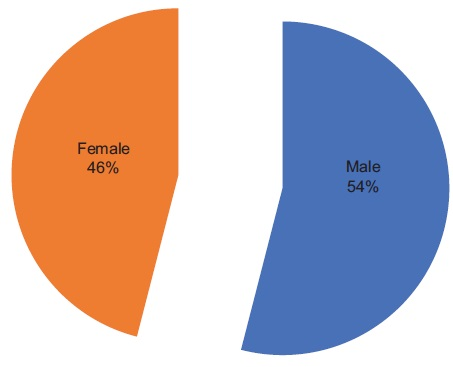 Figure 1.1: Sex distribution of respondents