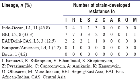Table 2: Distribution of lineages and drug-resistance profiles of each <i>Mycobacterium tuberculosis</i> complex isolate