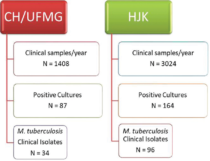 Figure 1: Mycobacterial Research Laboratory Routine Flowchart: CH/UFMG: Clinical Hospital of University Federal of Minas Gerais; HJK: Hospital Julia Kubstichek